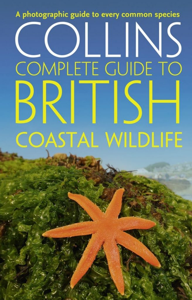rock-pool-project-Collins Complete Guide to British Coastal Wildlife