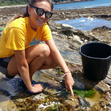 Rock Pool Project - Rockpooling volunteer- Bespoke Rock Pool Safar