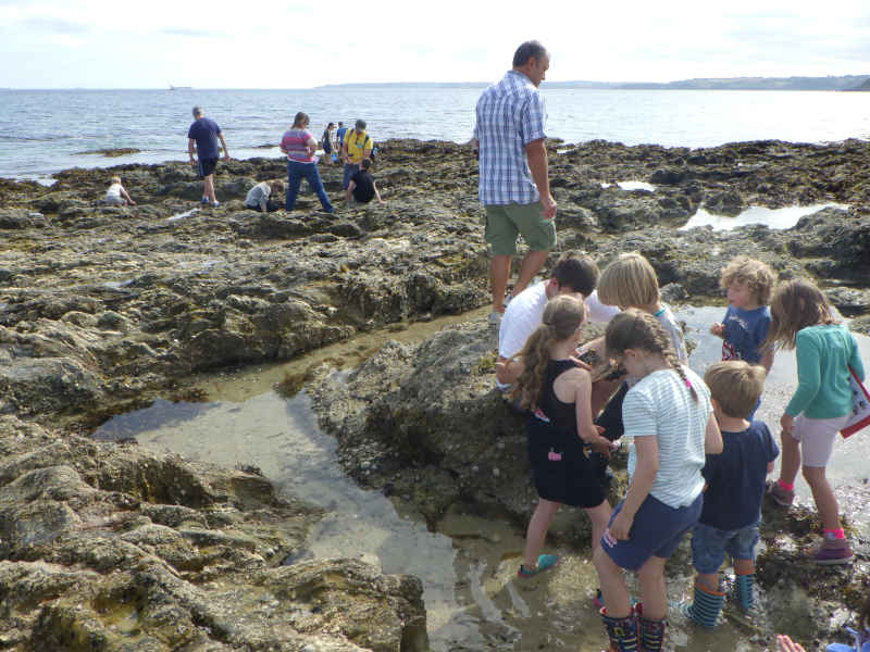 rock-pool-project-public event-castle-beach