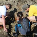 rock-pool-project-rock-poolers