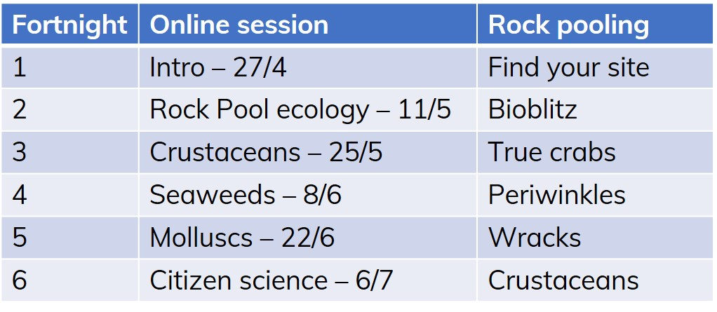 Online rock pooling course dates